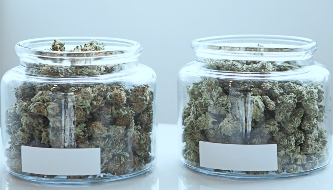 MEDICAL MARIJUANA BENEFITS: WHAT CAN MEDICAL MARIJUANA BE USED FOR?